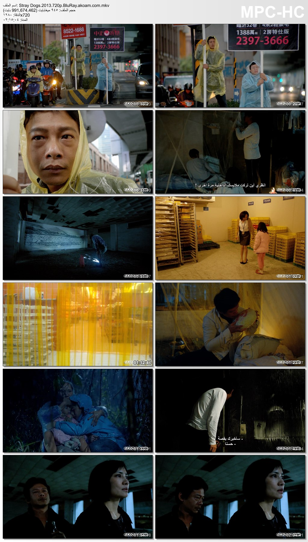 Stray Dogs 2015,Stray Dogs,Jiao you