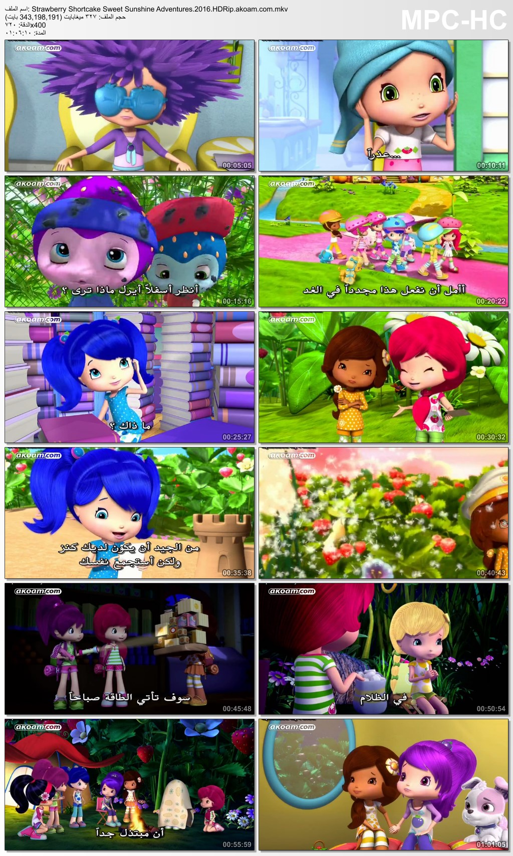 Strawberry Shortcake: Sweet Sunshine Adventures,الانيميشن,المغامرات