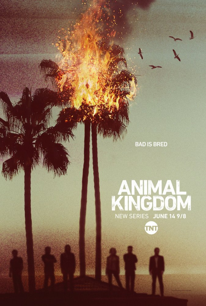 مسلسل Animal Kingdom مترجم