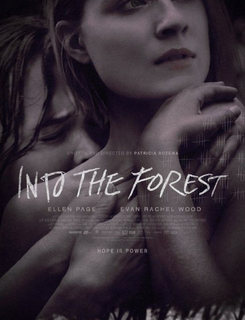 فيلم Into The Forest 2015 مترجم