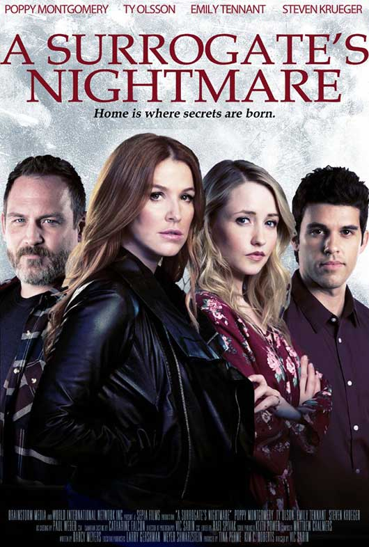 فيلم A Surrogate's Nightmare 2017 مترجم