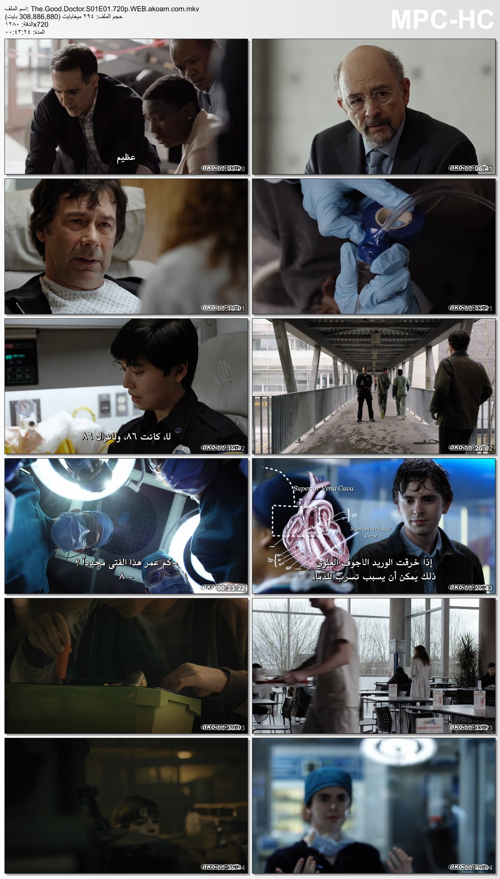 الدراما,The Good Doctor