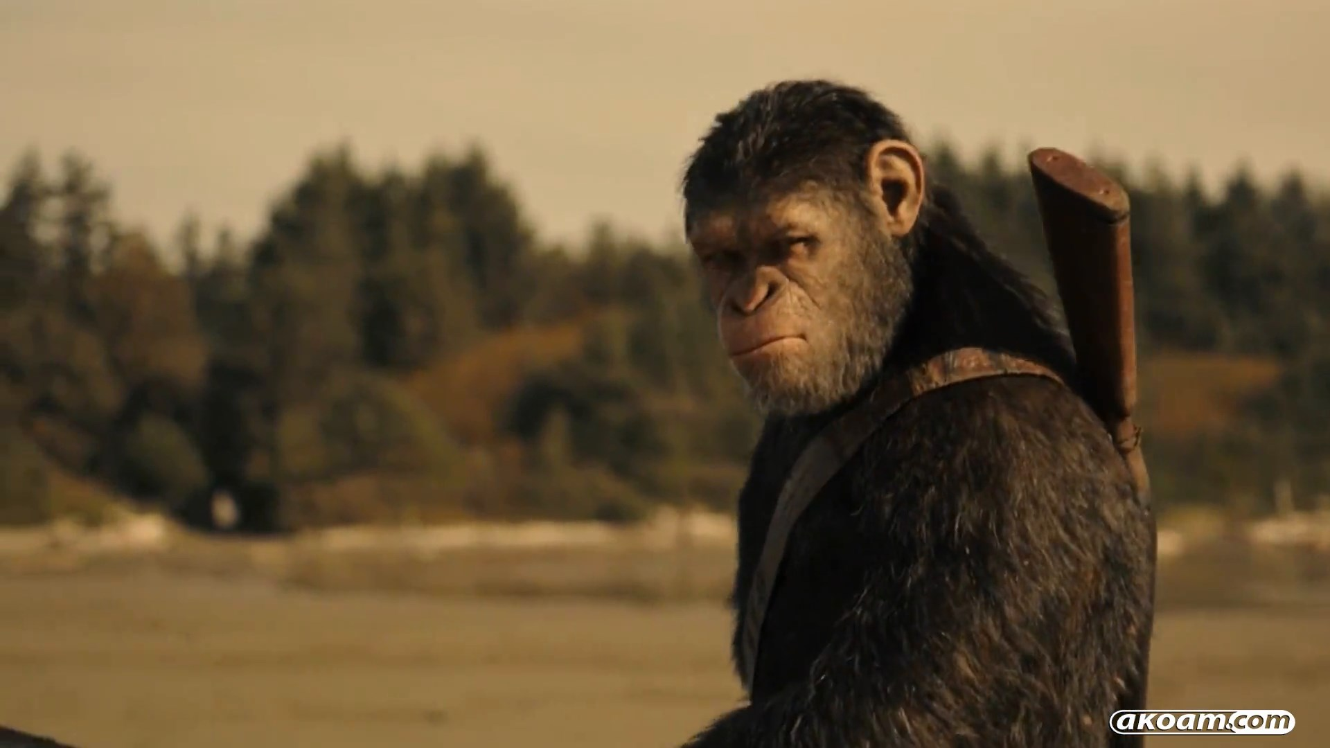 War for the Planet of the Apes Torrent Download [HDRip]
