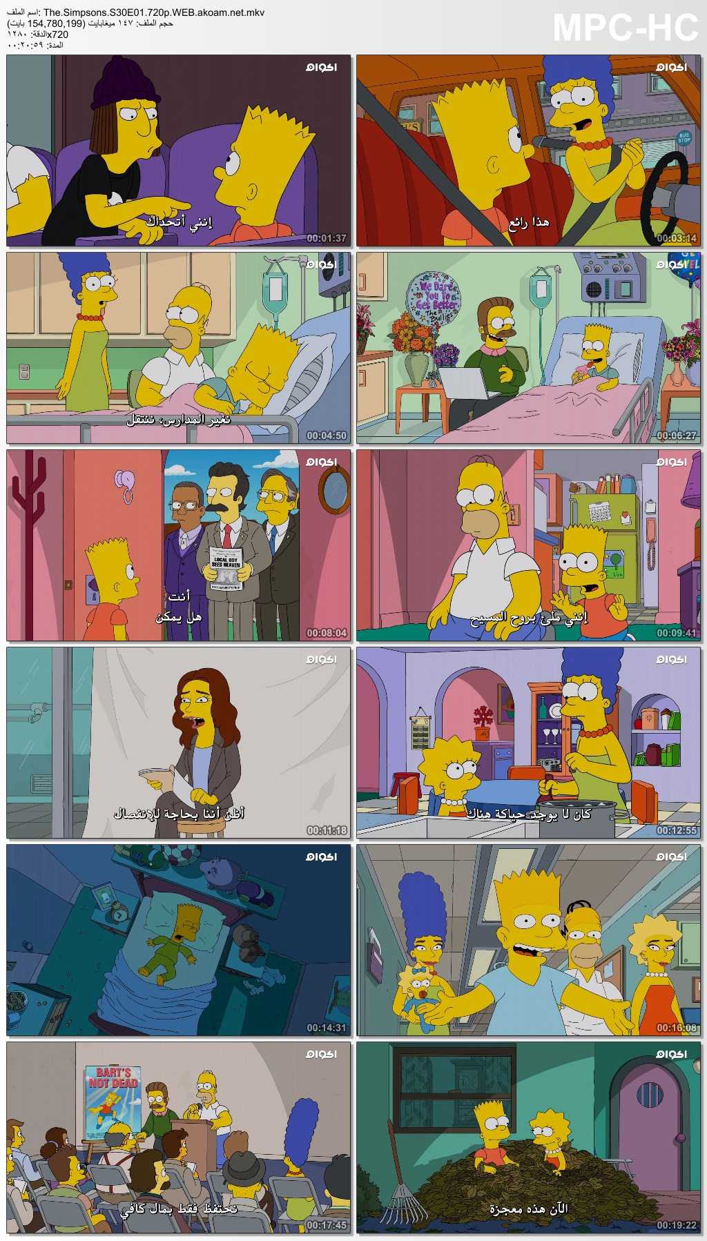 الكوميديا,The Simpsons,The Simpsons season 30,سيمبسون