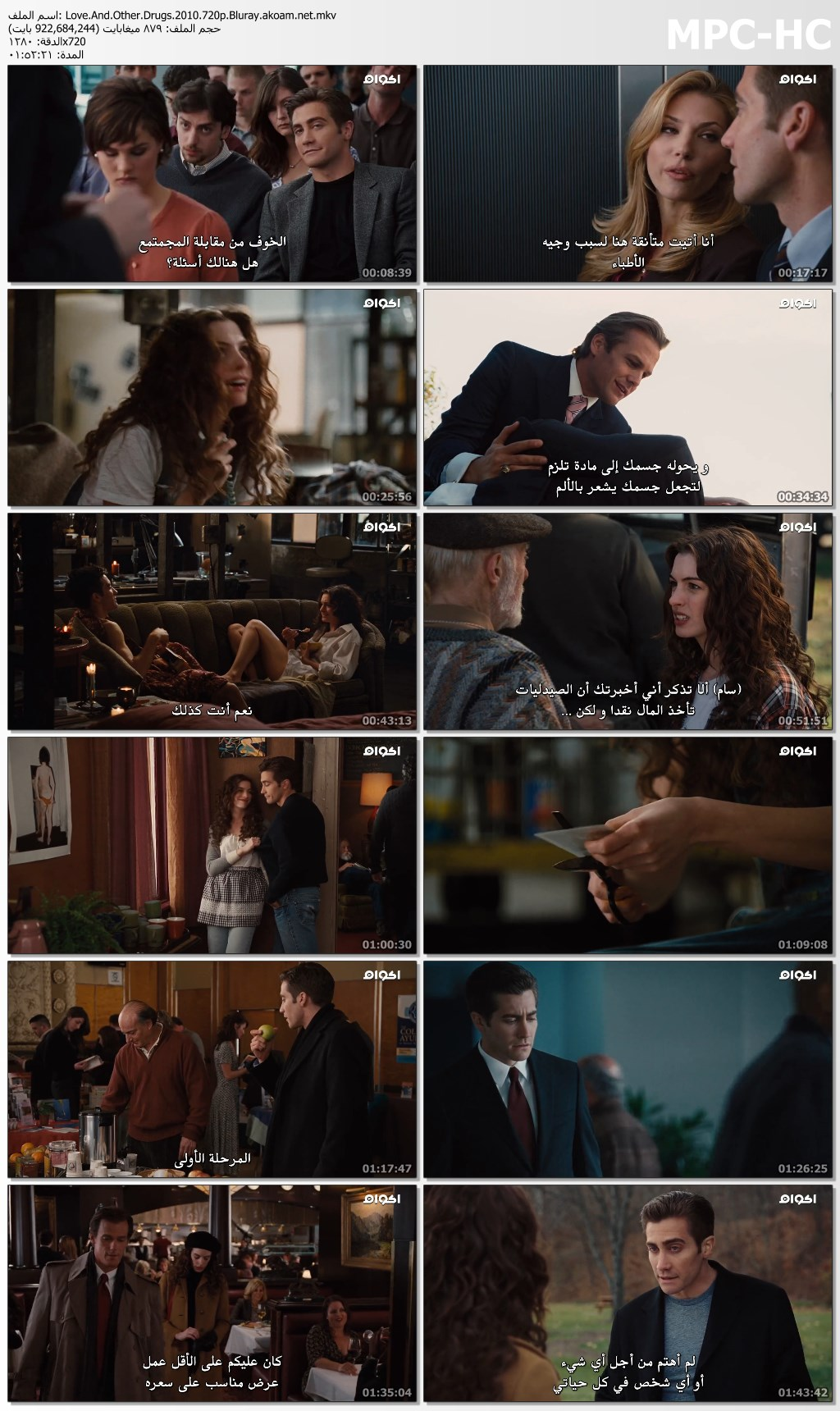 Love & Other Drugs,Love & Other Drugs 2010