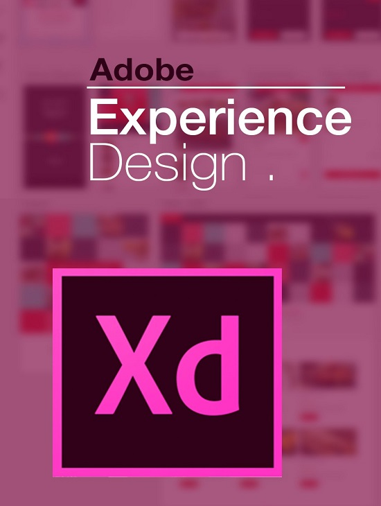 كورس Skillshare Adobe XD Interface Design