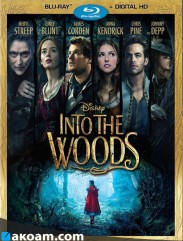 فيلم Into the Woods 2014 مترجم - BluRay