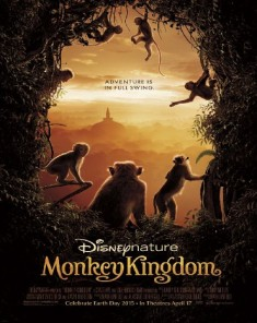 فيلم Monkey Kingdom 2015 مترجم