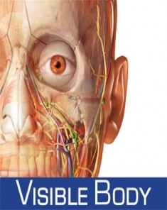 برنامج Human Anatomy Atlas 7 4 01