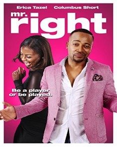 فيلم Mr. Right 2015 مترجم