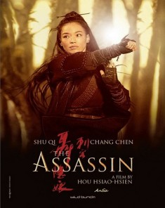 فيلم The Assassin 2015 مترجم