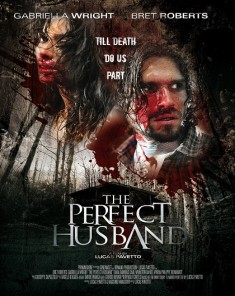 فيلم The Perfect Husband 2015 مترجم