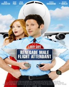 فيلم Larry Gaye Renegade Male Flight Attendant 2015 مترجم