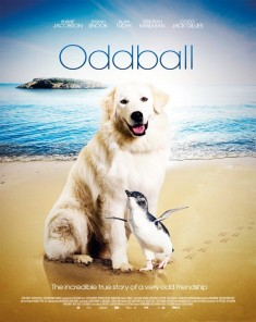 فيلم Oddball and the Penguins 2015 مترجم