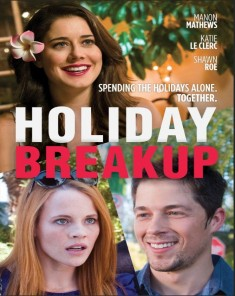 فيلم Holiday Breakup 2016 مترجم
