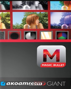 فلاتر ريدجاينت Red Giant Magic Bullet Looks 4.0.2