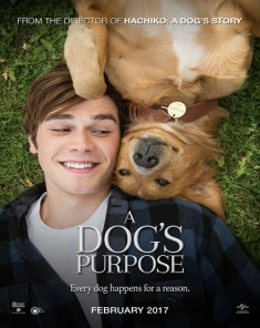 فيلم A Dog's Purpose 2017 مترجم